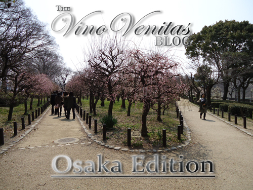 The Vino Venitas Blog 6th Edition The Osaka Edition